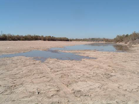 dry-delta